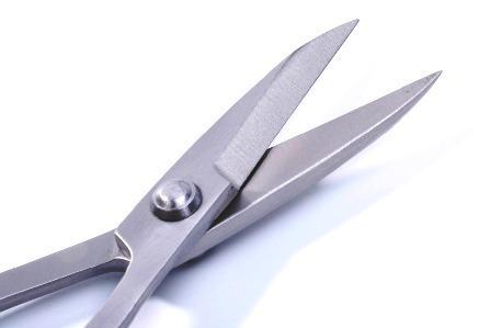 shears by tian bonsai tools.