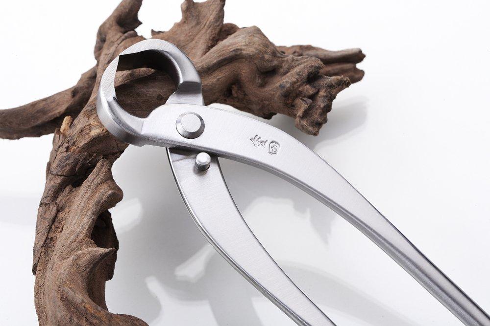 root cutter tian bonsai